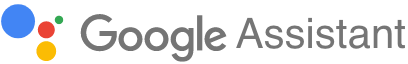 Google Assistant voicebot